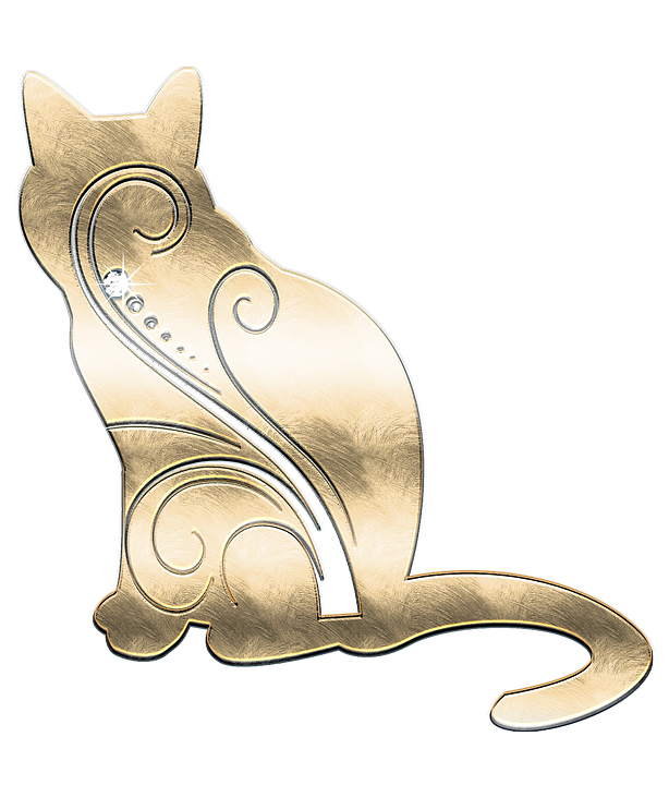 chat bijou